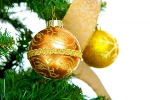 Christmas Tree Shopping Tips